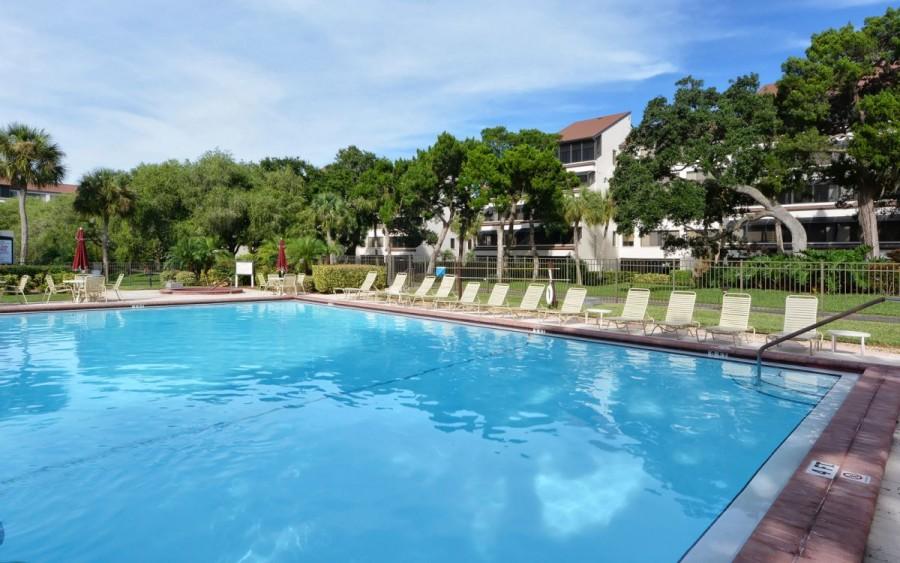 bayside pool