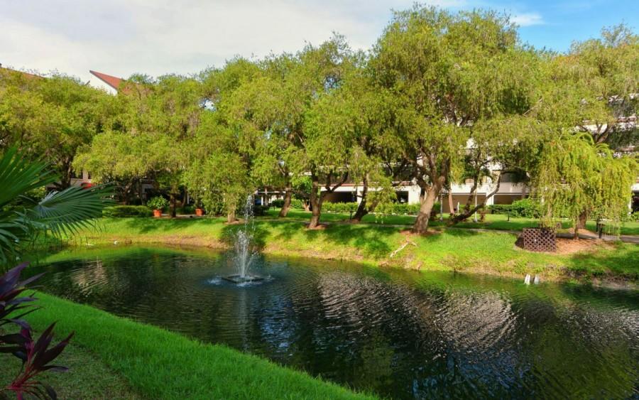 bayside pond